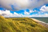 Dune — Foto Stock