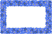 Forget-me-not frame — Stock Photo