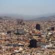 Royalty-Free Stock Photo: Barcelona Panorama