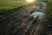 Muddy road — Stock Photo