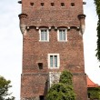 Wawel Castle tower. Krakow. Poland — Stock Photo #2180808