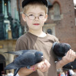 Boy is feeding the birds — Stock Photo #2180814