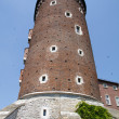 Wawel Castle tower. Krakow. Poland — Stock Photo #2180825
