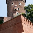 Wawel Castle tower. Krakow. Poland - Foto de Stock