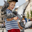 Boy is feeding the birds - Foto Stock