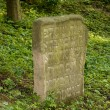 Old Jewish cemetery — Stock Photo #2183613