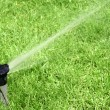 Lawn Sprinkler — Stock Photo