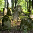 Old Jewish cemetery - Photo