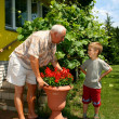 grandfather and grandson — Stock Photo