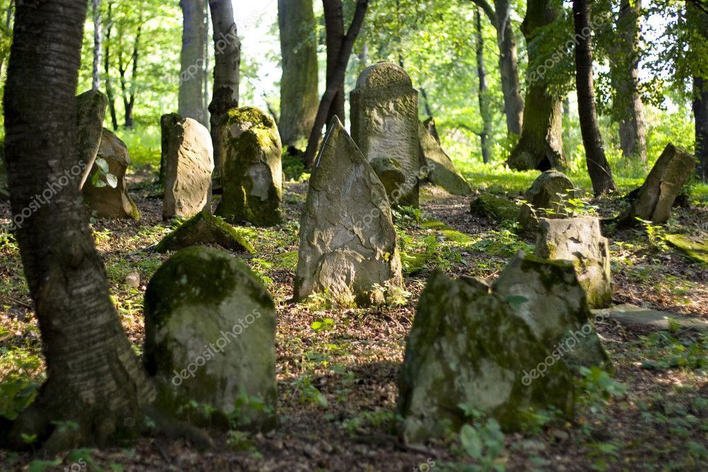 Old Jewish cemetery — Stock Photo #2184093