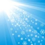 Snowflake Decoration — Stock Vector
