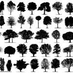 Black tree silhouettes — Stock Vector