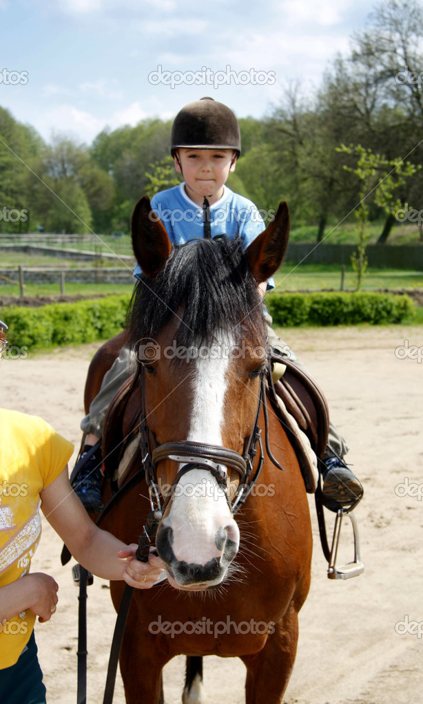 The young boy rides on a horse  Stock Photo #2315579