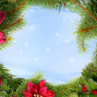 Christmas Wreath — Stock Photo #2416321