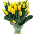 Stock Photo: Yellow tulips isolated on white