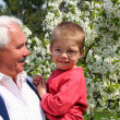 Happy spring with grandfather — Stock Photo
