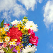 Stock Photo: Spring flowers on blue sky background