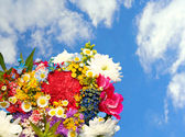 Spring flowers on blue sky background — Stock Photo
