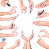 Hand gebaren set, geïsoleerd — Stockfoto