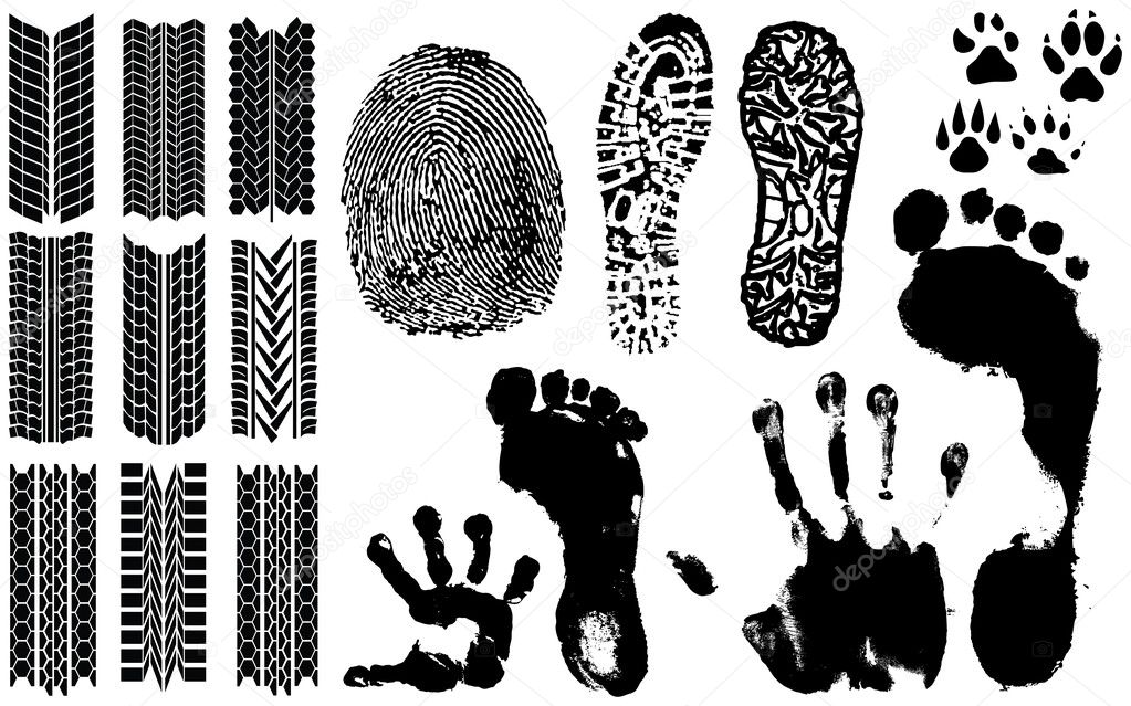 A collection of Vector Fingerprints, Footprints and more  Stock Vector #2607872