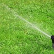 Working lawn sprinkler - Stockfoto