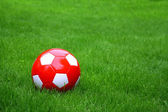 Sport ball over the grass — Stock Photo