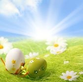 Easter Eggs sitting on grass — Stock Photo