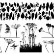 Vector plants and leafs — Image vectorielle