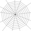 Stock Vector: Spider web