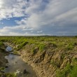 Stock Photo: Polluted stream with blue skies