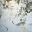 Grungy wall texture — Stock Photo #2286095