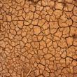 Dry cracked ground surface - 图库照片