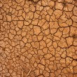Stock Photo: Dry cracked ground surface