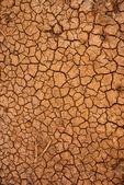 поверхность сухой потрескавшейся земле — Стоковое фото