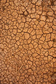 Dry cracked ground surface — Stockfoto