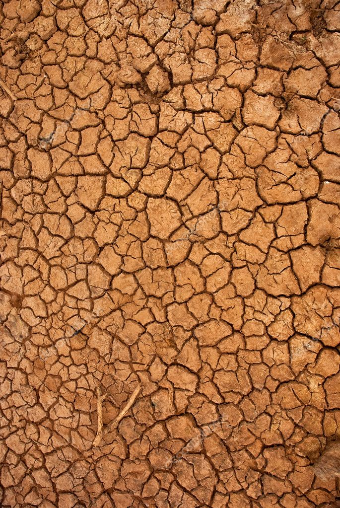 Dry cracked ground filling the frame as background — Stock Photo #2287219