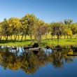 Stock Photo: Treeline reflecting on lake