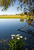 Reflecting lake — Stock Photo