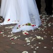 Wedding dress with petals — Stock Photo
