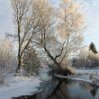 Stock Photo: Begin winters. Freezing creek