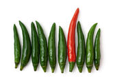 Green and red peppers isolated — Stock Photo