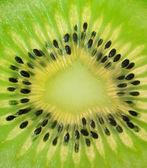 Kiwi (macro) — Stock Photo