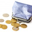 Purse with pocket money isolated — Stock Photo