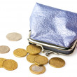 Stock Photo: Purse with pocket money isolated