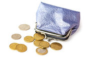 Purse with pocket money isolated — Stock Photo