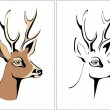 Portrait of roe shed cast horns vector a — Stok Vektör