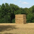 Bale of straw — Stock Photo #2428841