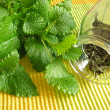 Tea herbs with balm — Stock Photo