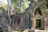 Preah Khan — Stock Photo