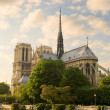 Stock Photo: Notre Dame de Paris.